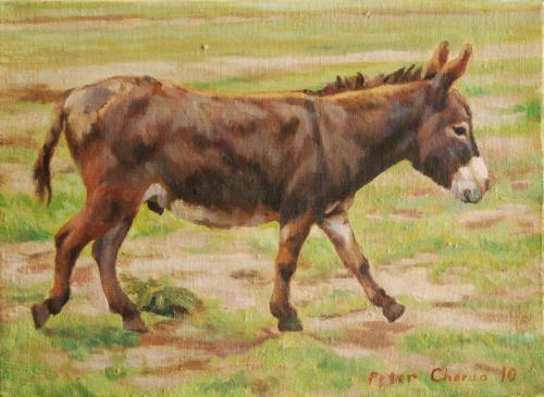 "<div class='artwork-listing'><span class='artwork-listing-artist'><a href=""/users/peter-chorao"">Peter Chorao</a></span>, <span class='artwork-listing-title'><a href=""/portfolio/11716/donkey"">Donkey</a></span>, <span class='artwork-listing-year'>2010</span>, <span class='artwork-listing-materials'>oil on canvas</span>, <span class='artwork-listing-dimensions'>8"" x 10""</span></div>"