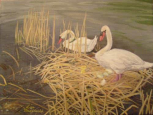 "<div class='artwork-listing'><span class='artwork-listing-artist'><a href=""/users/lisa-macdonald"" class=""active"">Lisa MacDonald</a></span>, <span class='artwork-listing-title'><a href=""/portfolio/12472/swans-guarding-nest-eggs"">Swans Guarding the Nest Eggs</a></span>, <span class='artwork-listing-year'>2011</span>, <span class='artwork-listing-materials'>Acrylic on Canvas</span>, <span class='artwork-listing-dimensions'>9 x 12 inches</span></div>"