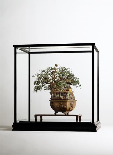 "<div class='artwork-listing'><span class='artwork-listing-artist'><a href=""/users/takanori-aiba"" class=""active"">Takanori Aiba</a></span>, <span class='artwork-listing-title'><a href=""/portfolio/12587/bonsai"">Bonsai-A</a></span>, <span class='artwork-listing-year'>2004</span>, <span class='artwork-listing-materials'>mixed media, glass</span>, <span class='artwork-listing-dimensions'>15.7""x11.8""x15.7""  </span></div>"