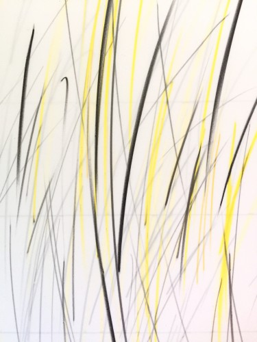 "<div class='artwork-listing'><span class='artwork-listing-artist'><a href=""/users/carole-p-kunstadt"" class=""active"">Carole P. Kunstadt</a></span>, <span class='artwork-listing-title'><a href=""/portfolio/13864/markings-no-66-detail"">Markings No. 66, detail</a></span>, <span class='artwork-listing-year'>2016</span>, <span class='artwork-listing-materials'>graphite, colored pencil on double layer mylar</span>, <span class='artwork-listing-dimensions'>27 x 36</span></div>"