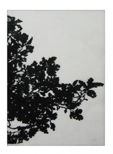 "<div class='artwork-listing'><span class='artwork-listing-artist'><a href=""/users/saidhbh%C3%ADn-gibson"" class=""active"">Saidhbhín Gibson</a></span>, <span class='artwork-listing-title'><a href=""/portfolio/1876/overhang-oak"">Overhang in Oak</a></span>, <span class='artwork-listing-year'>2011</span>, <span class='artwork-listing-materials'>Acrylic on paper</span>, <span class='artwork-listing-dimensions'>6"" x 4""</span></div>"